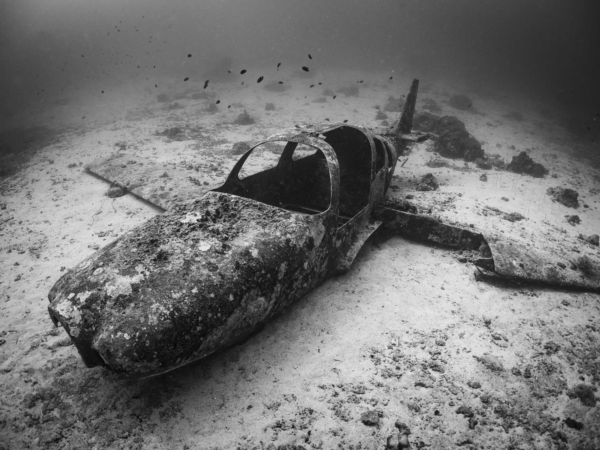 wwii airplane on reef