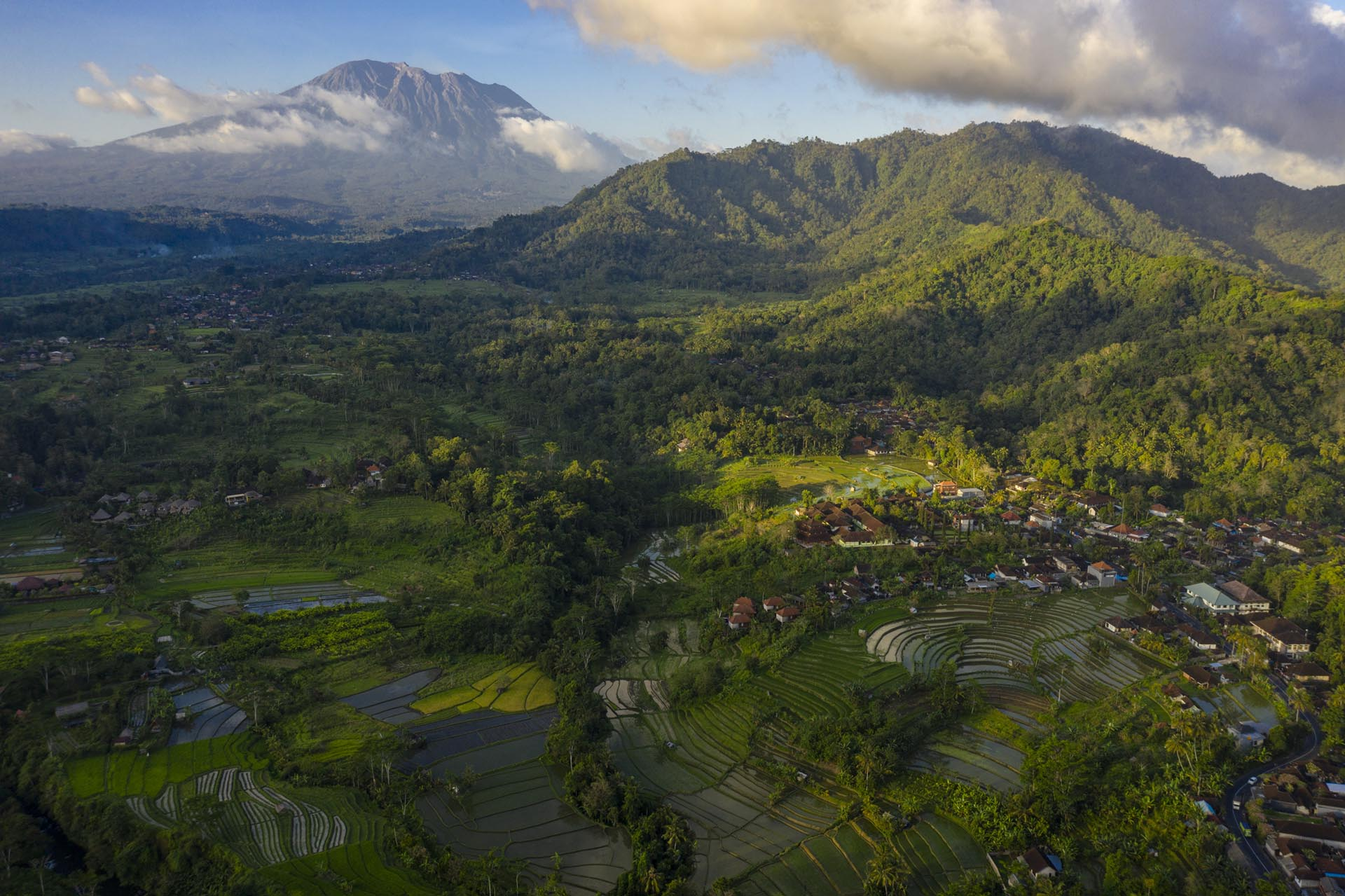 bali rice fields and volcano
