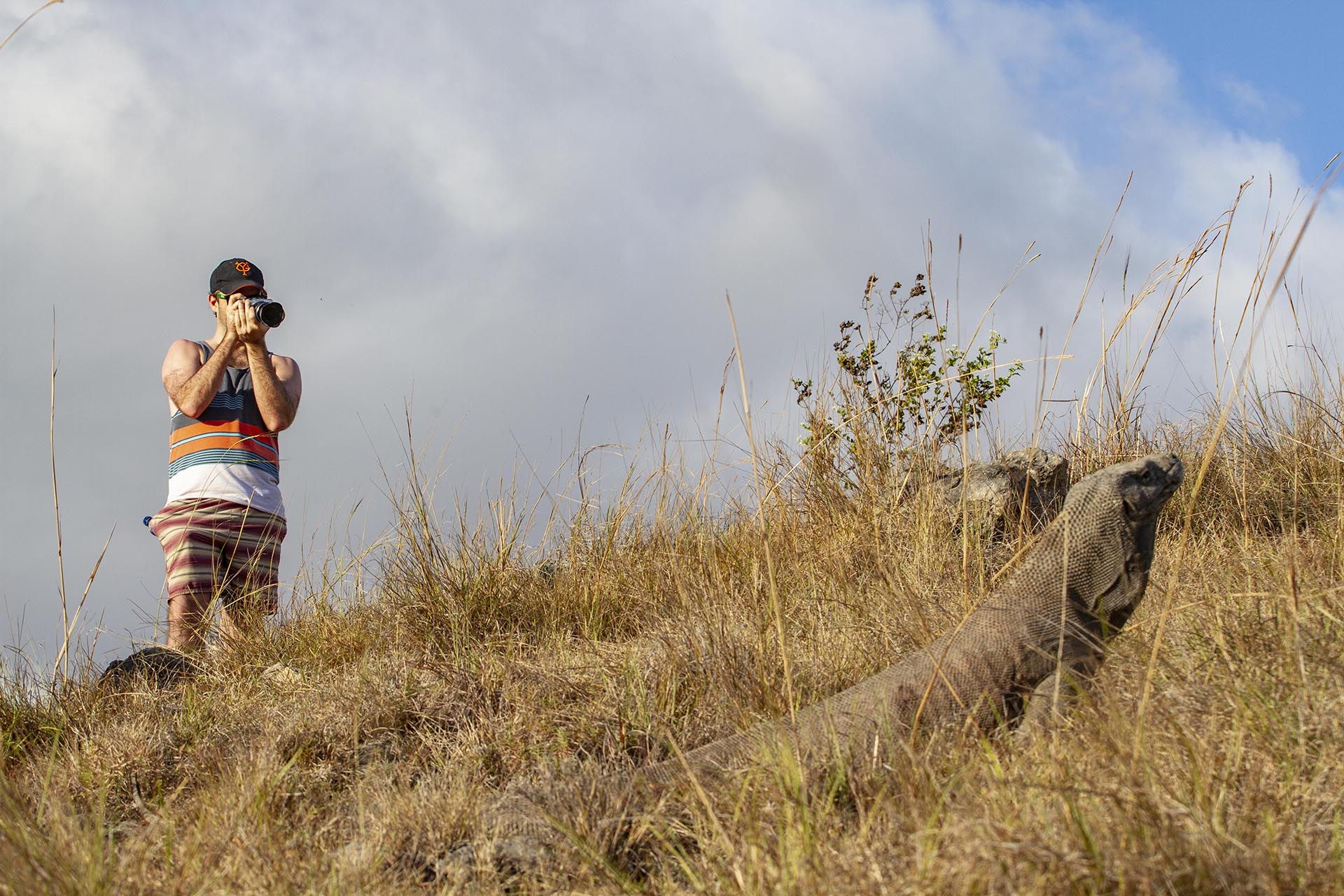 Guest photographing Komodo dragon on island